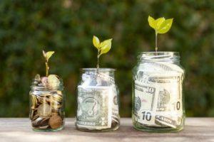 A relação entre Dinheiro e Energia representada pela imagem de plantas crescendo em potes de dinheiro