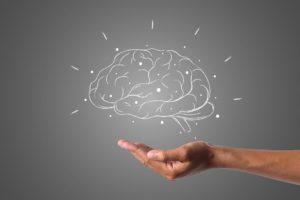 O cérebro é a principal ferramenta que utilizamos no intrafísico para o aprendizado e a evolução, de modo que o amadurecimento cerebral é uma fase importante para a fixação na programação existencial.